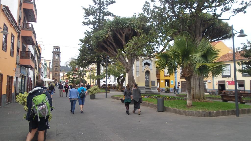13 Teneryfa San Cristobal de la laguna