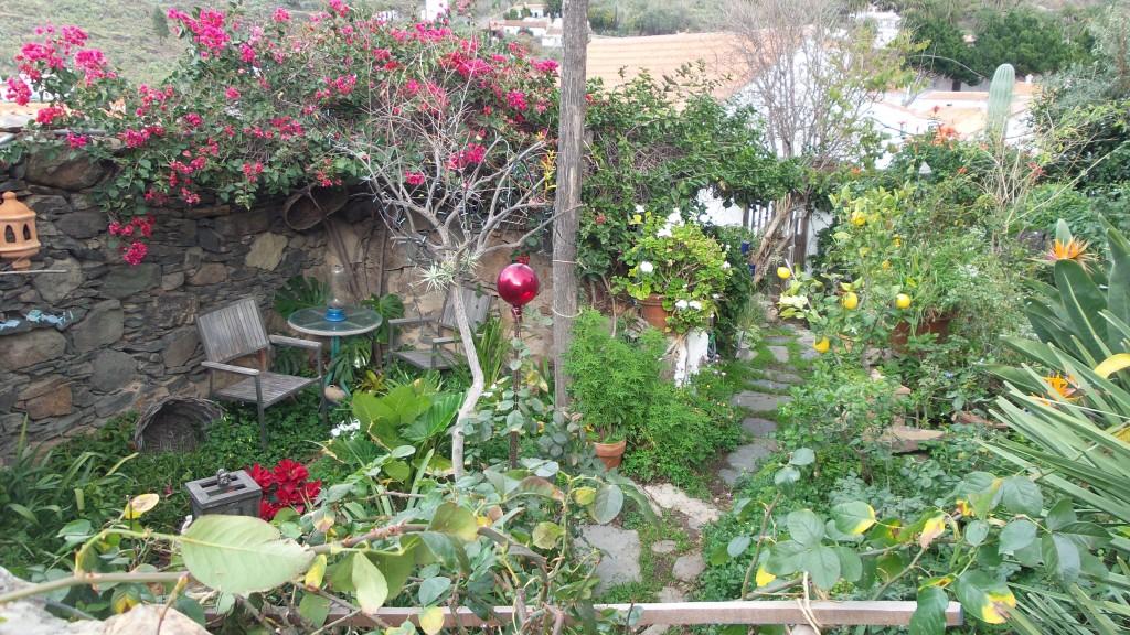 9 w ogródku tubylców na grand canarii